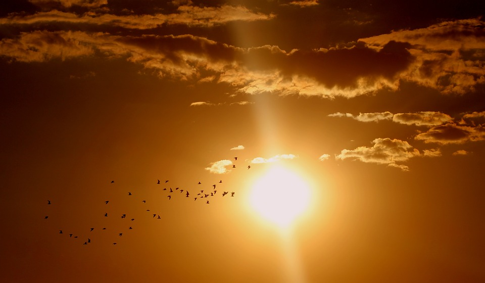 Sol Foto Pixabay