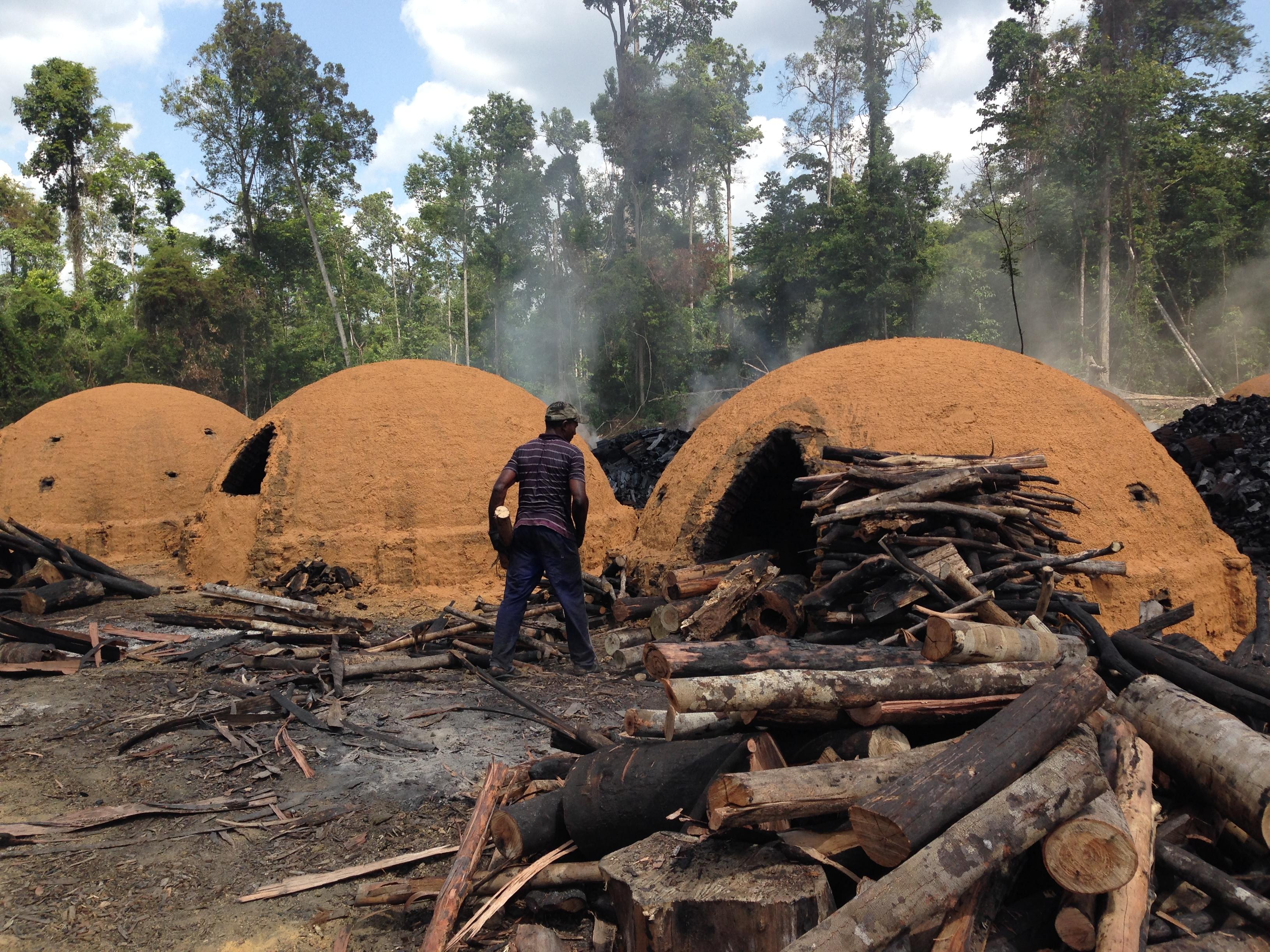 Trabalho Escravo - Foto MP Pará