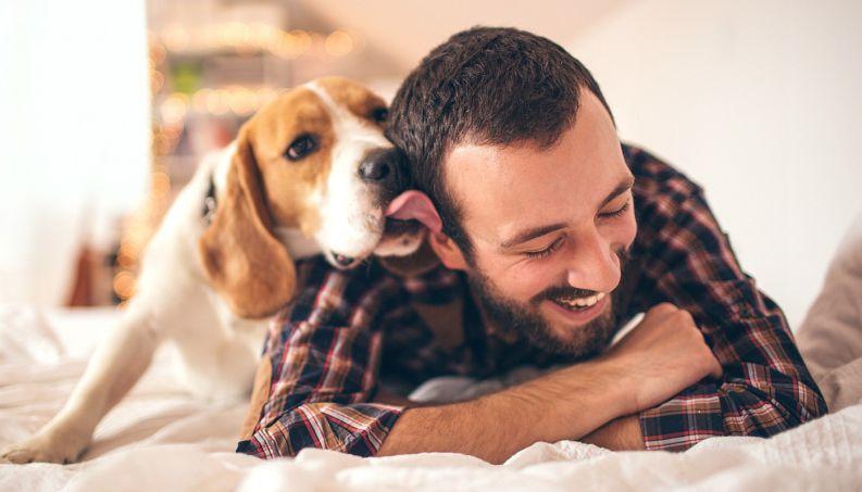 cachorro-lambendo-dono-0217-1400x800