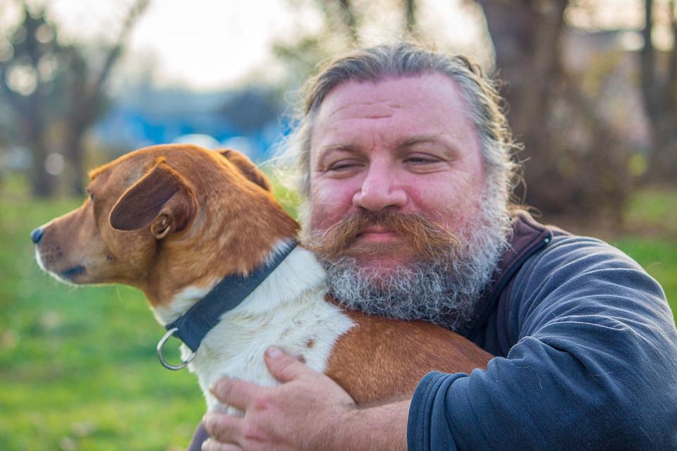 Cachorro - melhor amigo do homem - Foto Pixabay