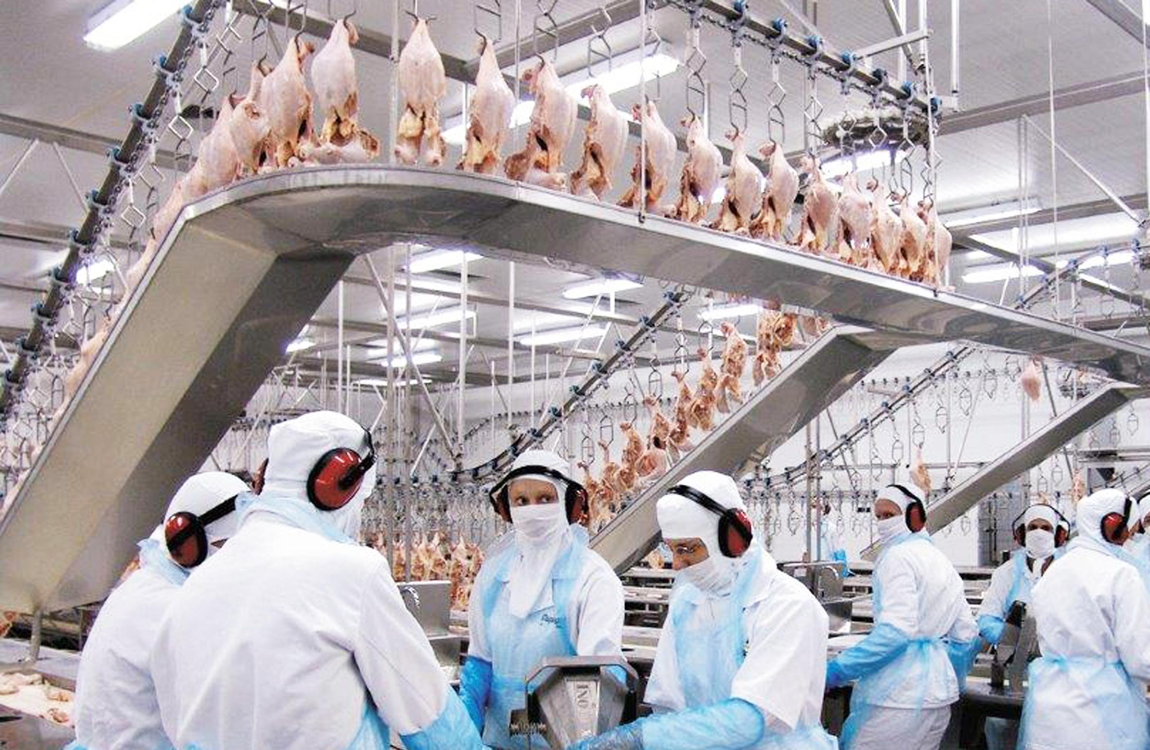 Indústria de Aves Copagril, em Marechal Cândido Rondon.Foto: O Presente