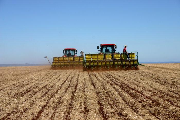 Produtores enfrentam dificuldades para armazenamento de grãos em plena safra