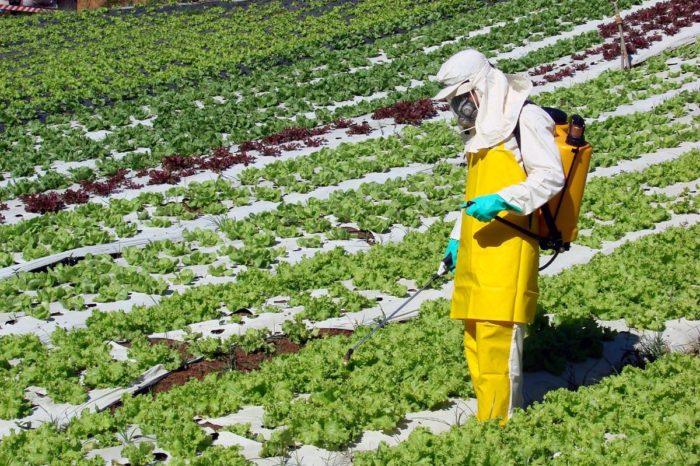 Lei sobre aplicação de agrotóxicos no Paraná está desatualizada, diz Adapar