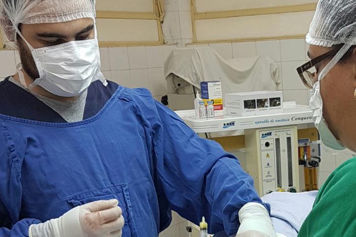 HV de Londrina usa técnica inédita de inseminação em cães