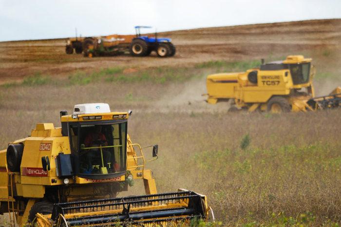 Aplicativos viram aliados de engenheiros agrônomos no campo