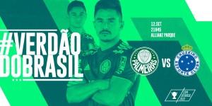 Palmeiras Divulgação