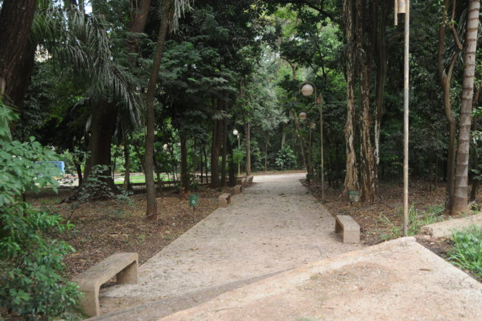 Comunidade pede em pesquisa segurança, limpeza e iluminação no Bosque