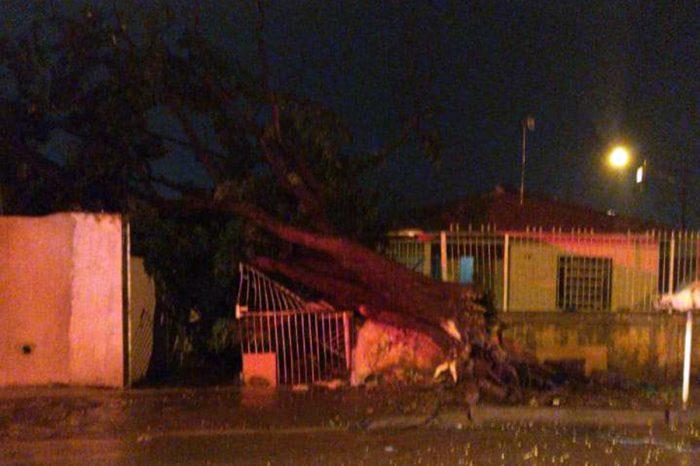Temporal deixa rastro de destruição em Londrina