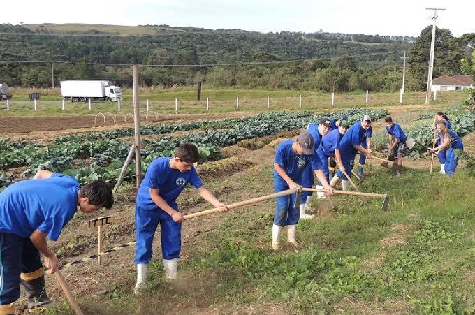 Câmara pede ao governo instalação de colégio agrícola em Londrina