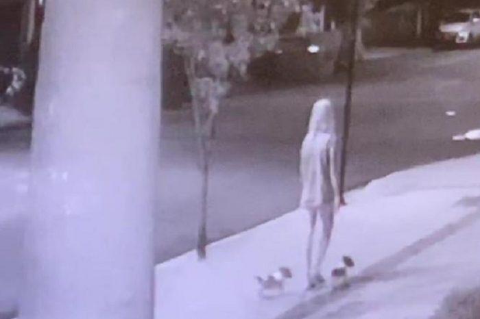 Mulher é flagrada abandonando filhotes de cães em caçamba; Vídeo