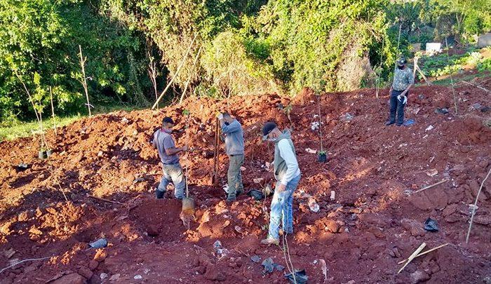 Sema revitaliza fundo de vale na região sul de Londrina