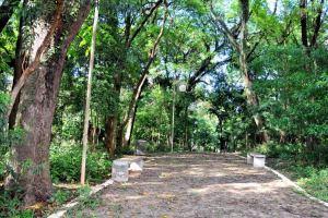 Tomada de preço para revitalização do Bosque é adiada para dezembro