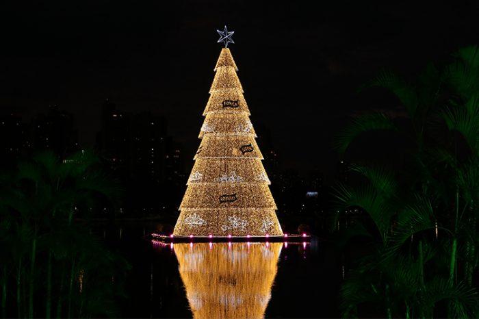 CREA fiscaliza árvores de Natal instaladas em Londrina