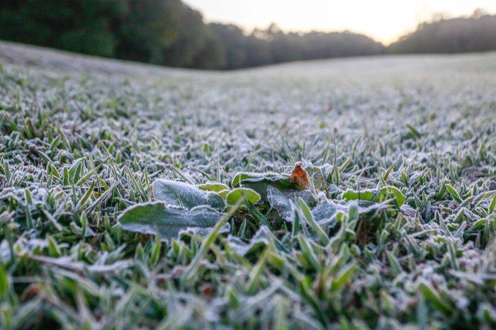 Assistência Social promete ampliar atendimento neste frio