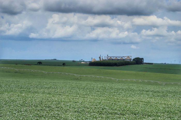 Ministério altera calendário do plantio de soja da safra 2021/22