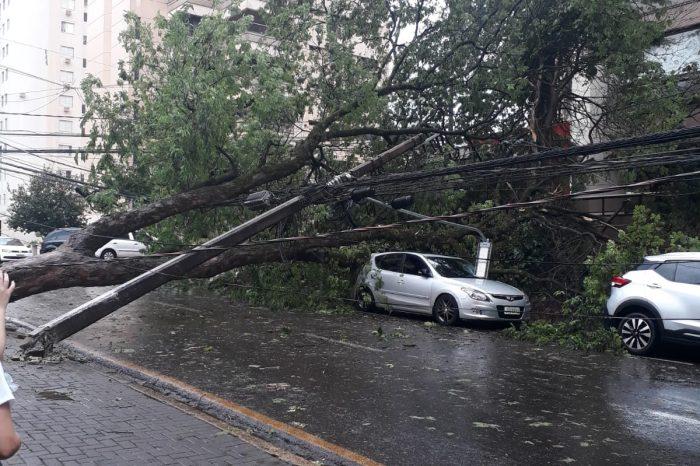 Chuva provoca estragos em vários pontos de Londrina; veja imagens e saiba os locais com problemas