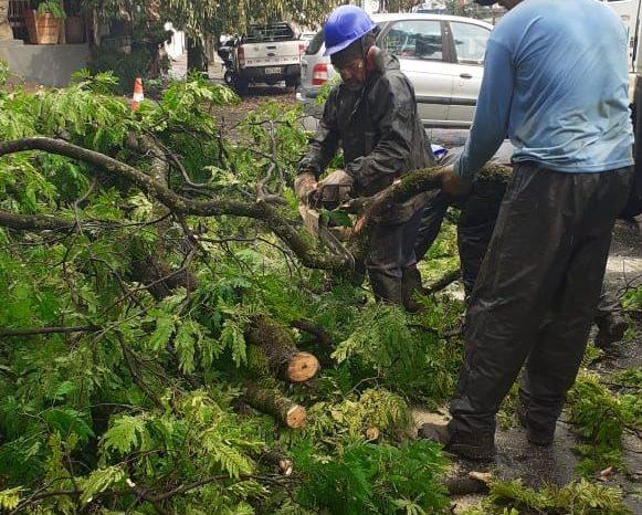 Coronel Pedro Ramos revela casas destelhadas com temporal em Londrina e pede auxílio da população